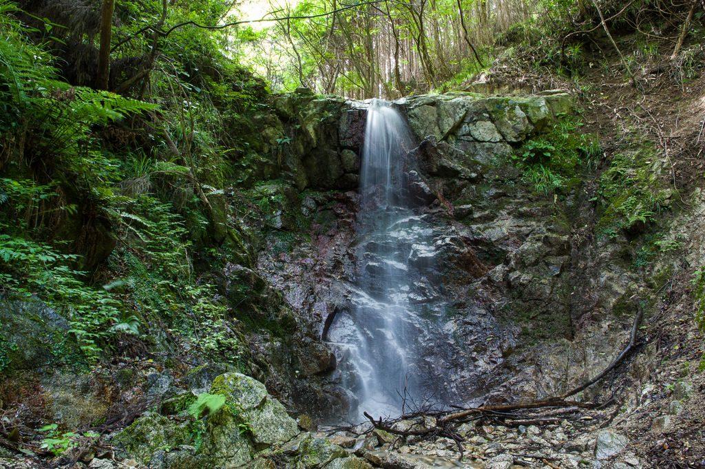 丸滝谷(奈良県/金剛山)