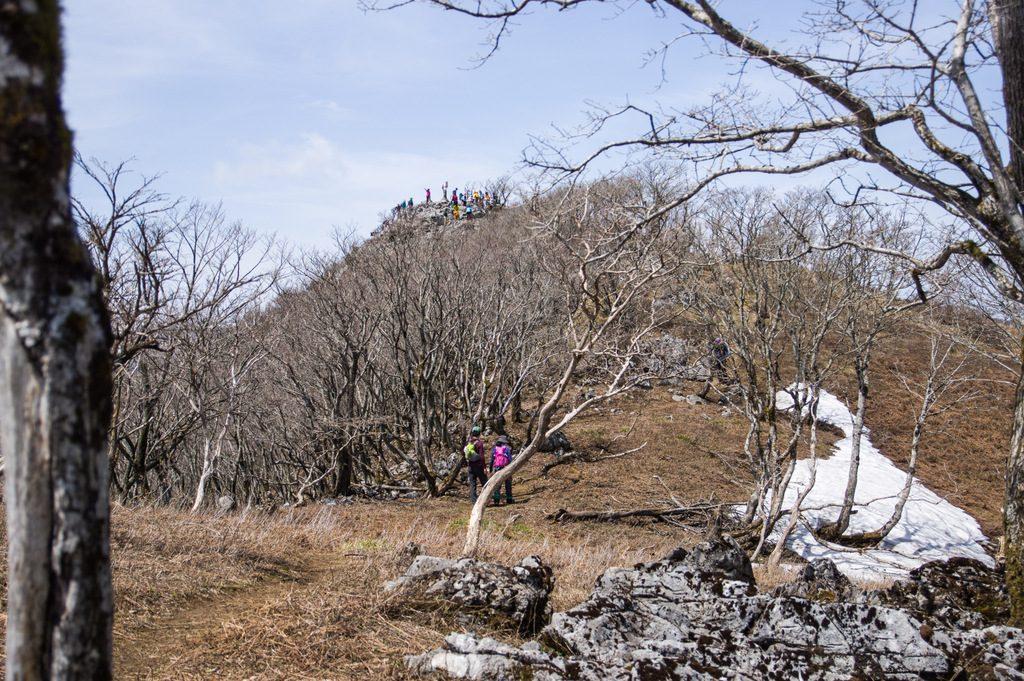 孫太尾根(滋賀県/鈴鹿山脈)