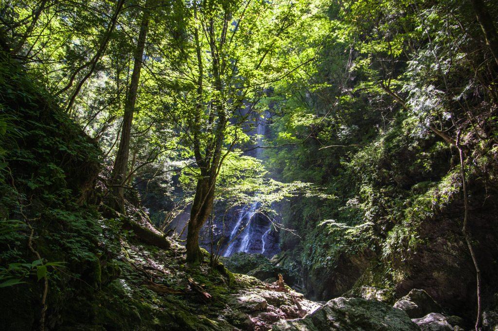 矢納谷(奈良県/大峰山脈)
