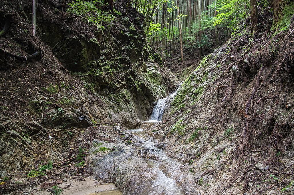 金剛山・妙見谷(奈良県、大阪府/金剛山地)