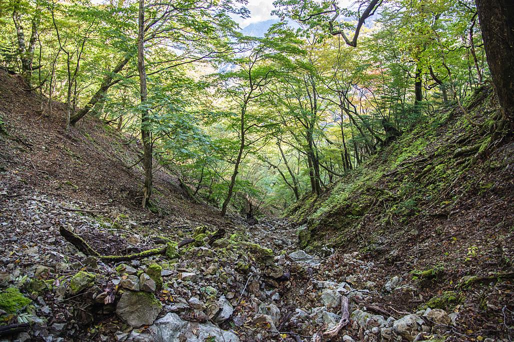 八経ヶ岳(奈良県/大峰山脈)