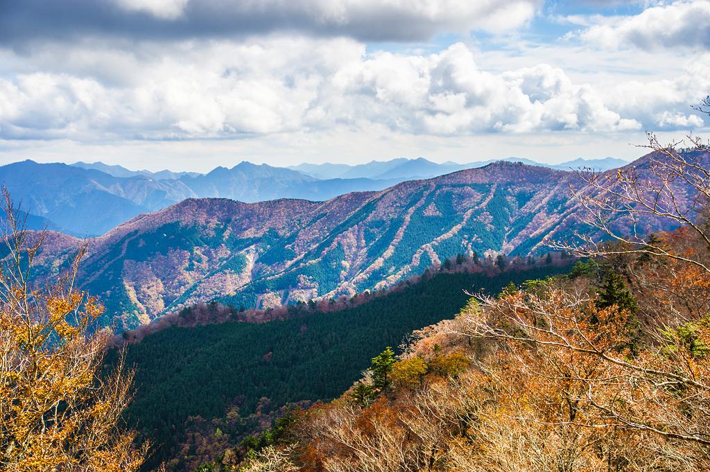 ナメゴ谷(奈良県/大峰山脈)