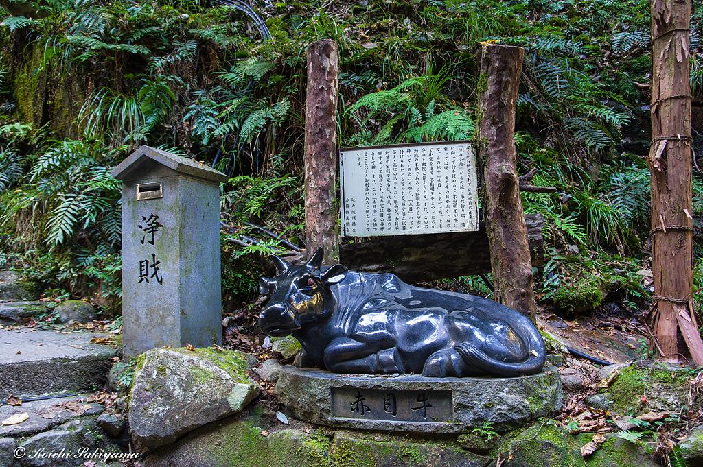 赤目四十八滝渓谷(三重県名張市)
