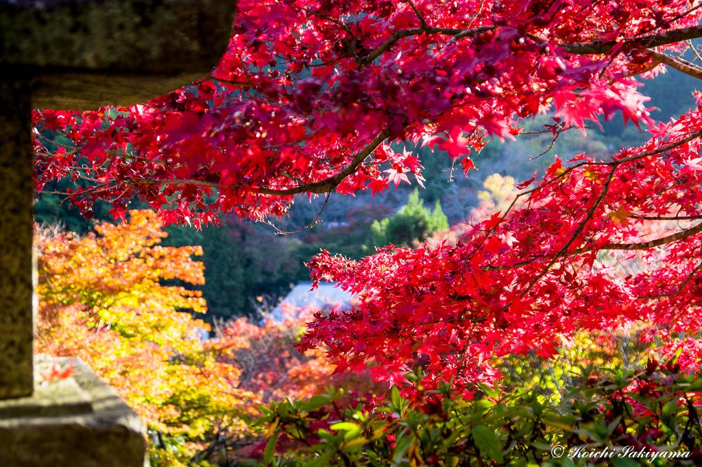 談山神社(奈良県)