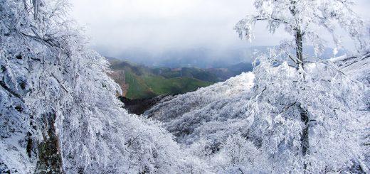 雲とともに粉雪が舞っています。