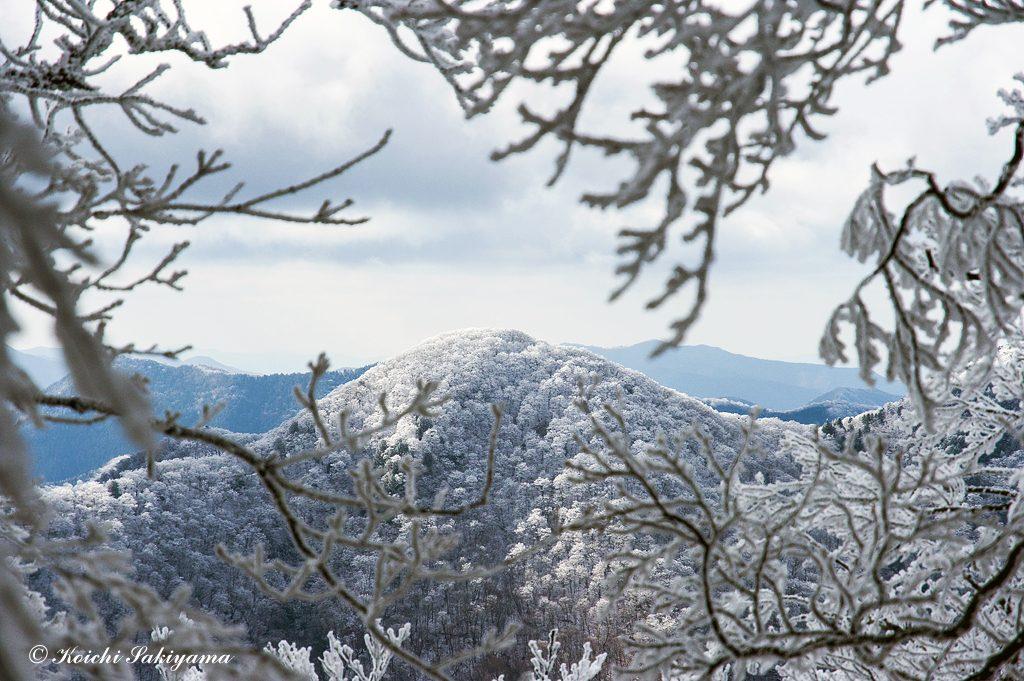 笹ヶ峰から千石山(奥ノ迷峰)も真っ白