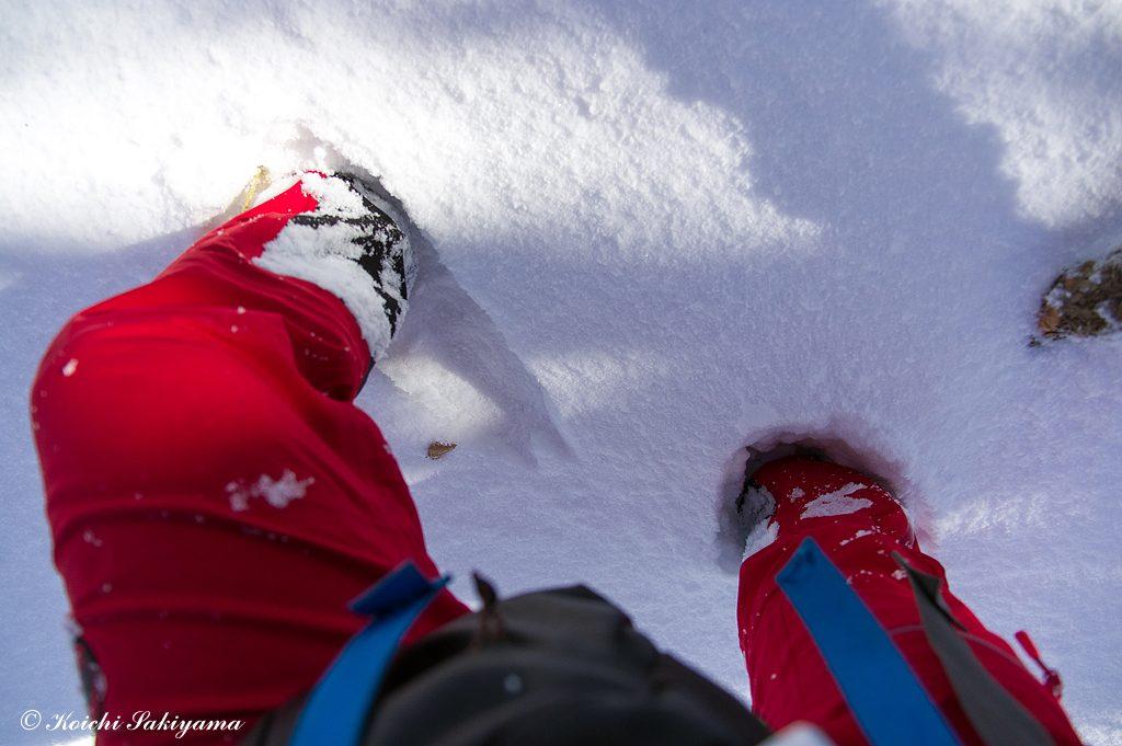 今年は積雪量が少なく、膝下(30~40cm)程度です。