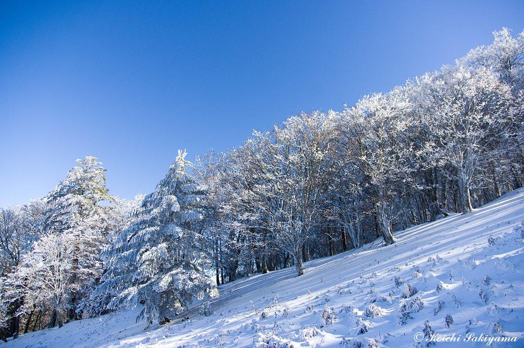 厳冬期に入るとなかなか足を踏み入れることができませんが、この日は素晴らしい時間と風景を楽しむことができました。