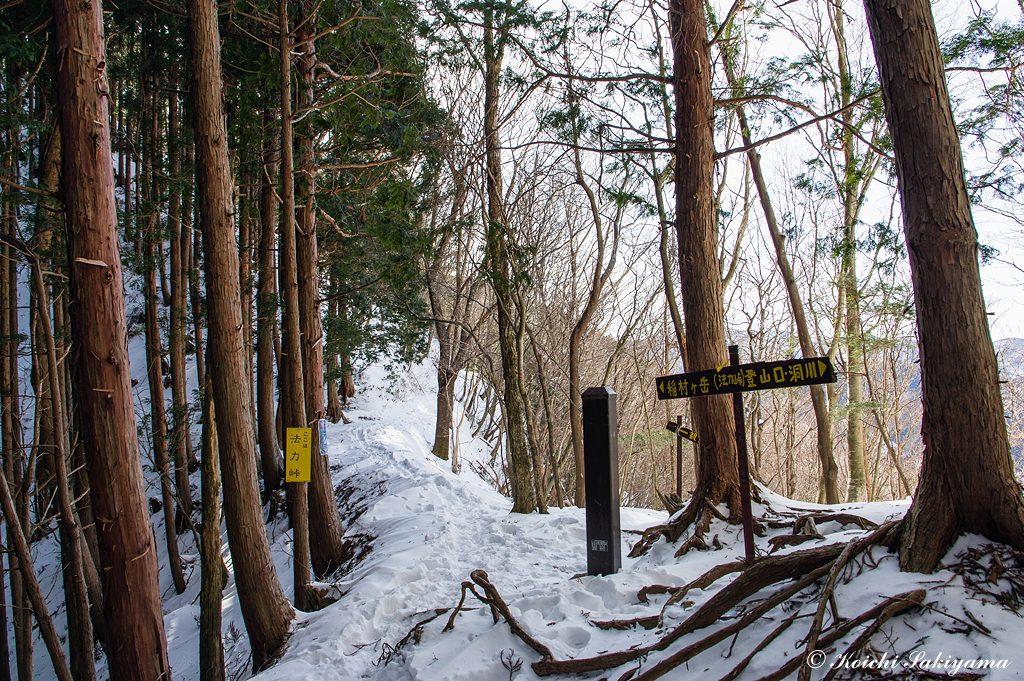 法力峠まで来ると展望が開け日差しを浴びながら雪道を歩きます。