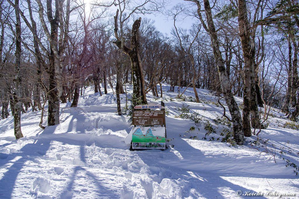 大日山直下まで、夏道ではなく直登する冬道を歩きます。