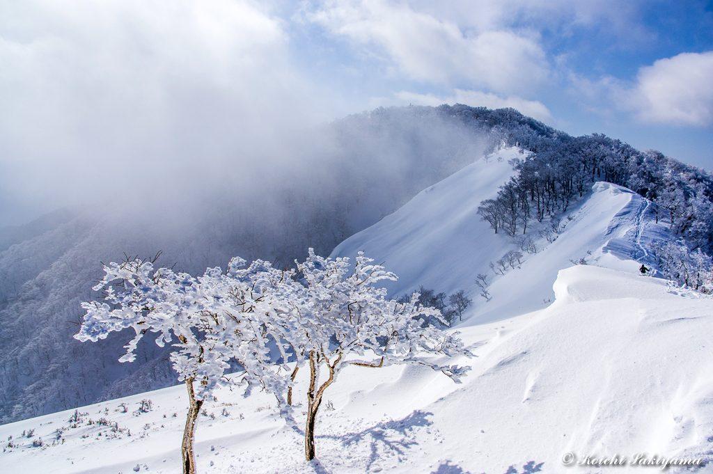 ガスが流れ綿向山の山頂部が姿を現し始めました。