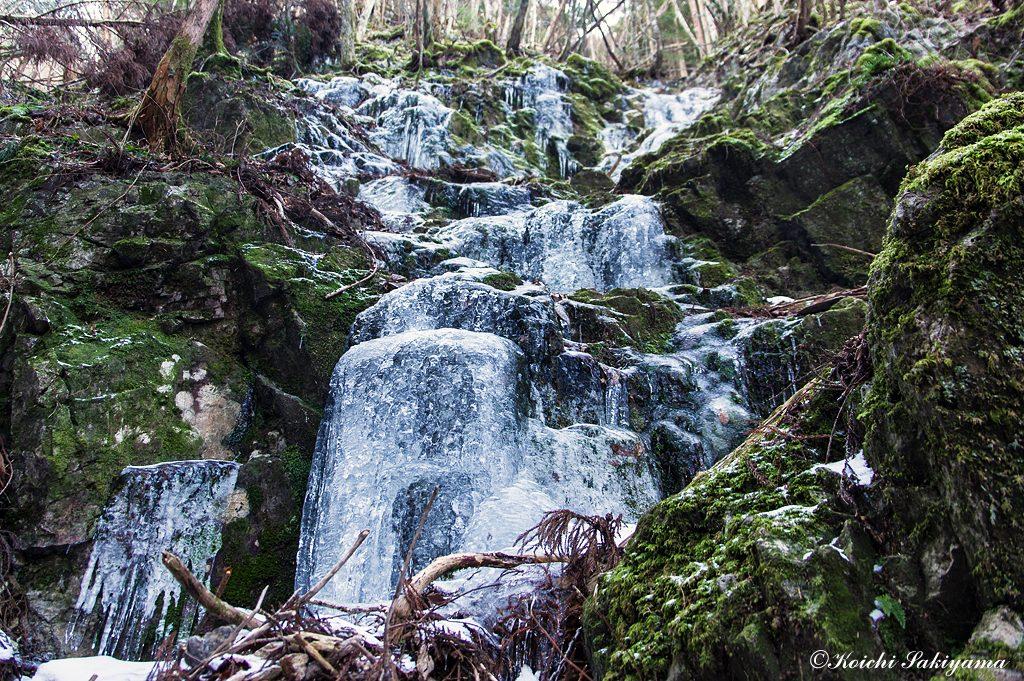 湧水が流れる山の斜面にはいたる所で凍てつく風景が見られます。