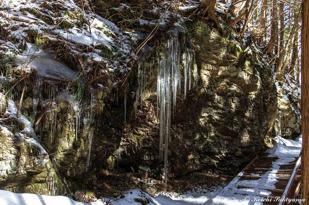 背丈を超える氷柱