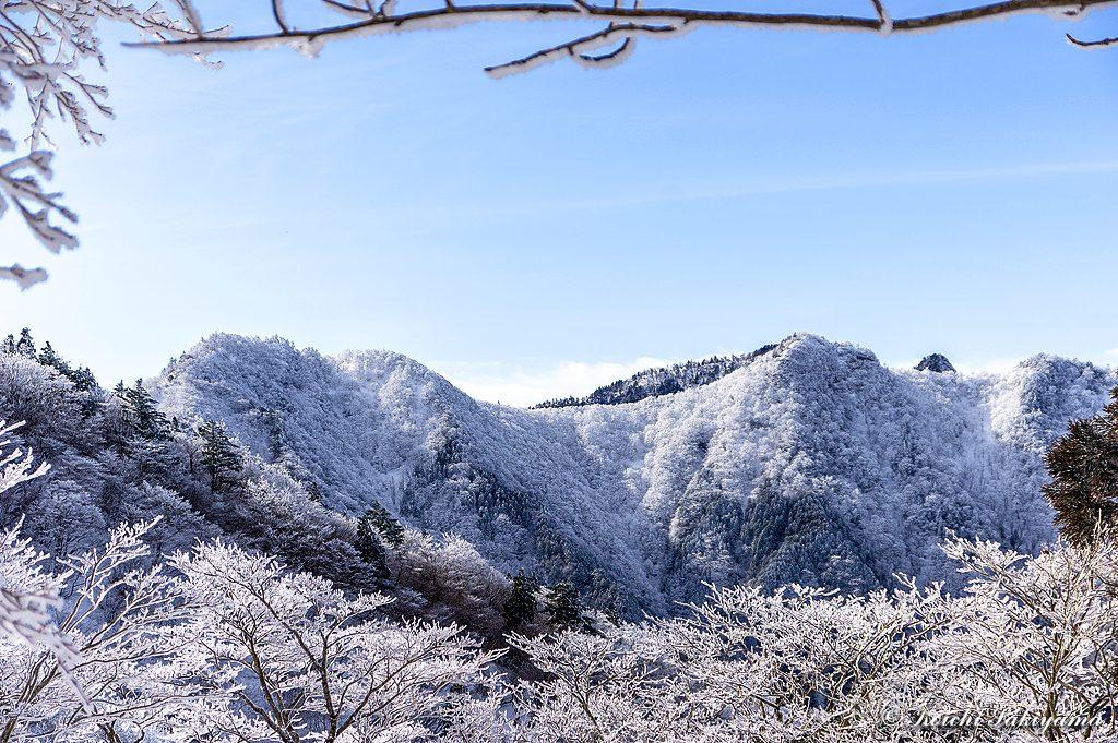 向かいの稜線は霧氷に覆われ綿帽子をかぶったように