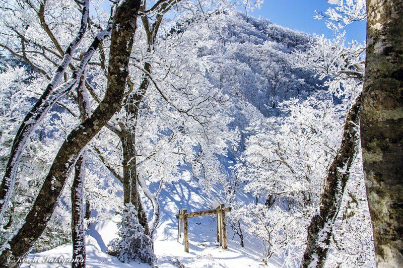 レンゲ辻の女人結界門が見えてきました。