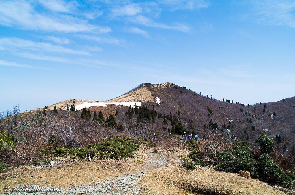 冬景色とは違った西南稜…季節風の通り道で高い木はほとんどありません。