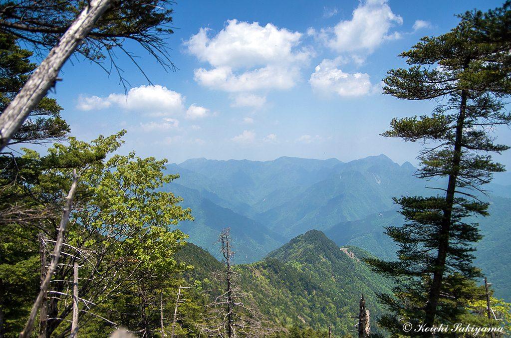 登ってきたザンギ平、鐵山の稜線と大峰の山々