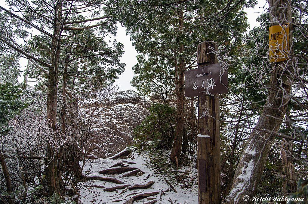 石ノ鼻辺りから冠雪と霧氷