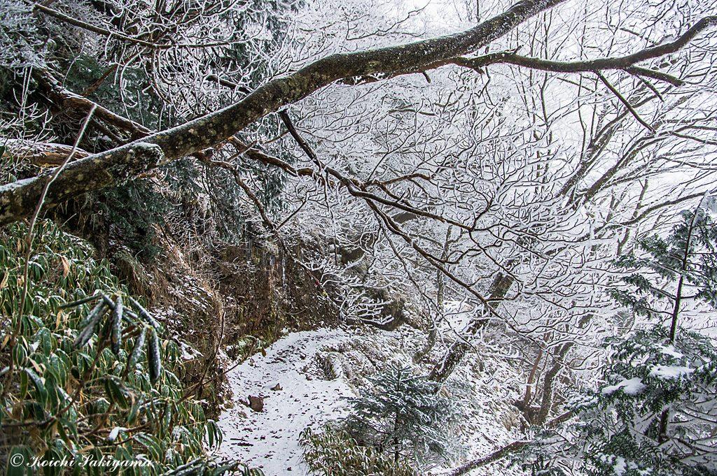 小普賢岳直下の巻き道(夏道)にも薄っすら積雪