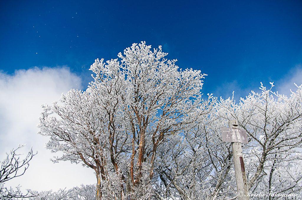 山頂に着くとビックリ…強い風が青空を呼び込んでくれました。