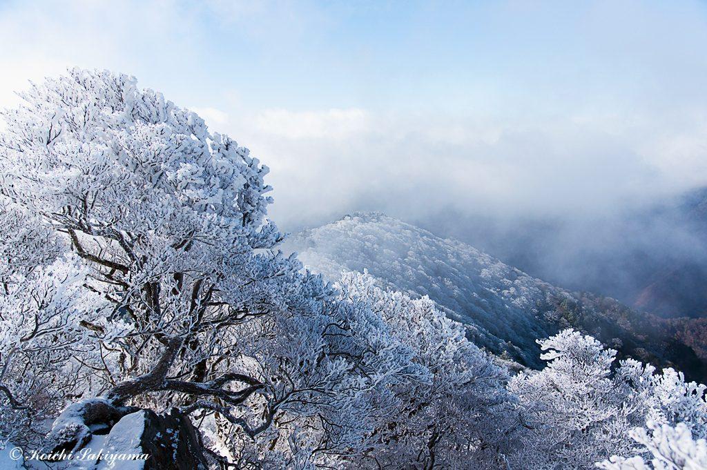 季節風に流れるガスの合間に霧氷の尾根