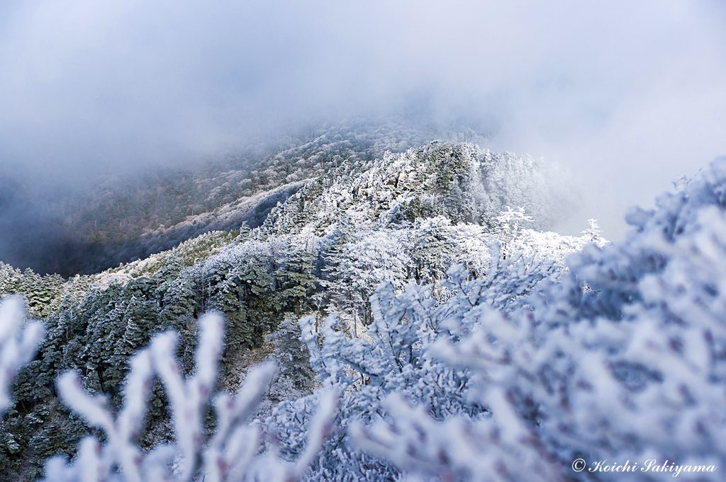 ガスと日差しと霧氷の織りなす幻想的な風景