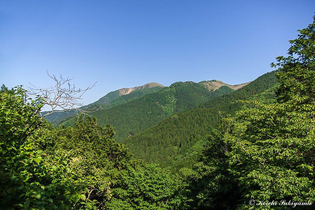 竜ヶ岳の美しい山容