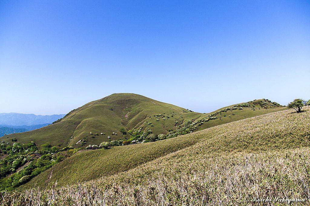 竜ヶ岳の延びる稜線と竜ヶ岳
