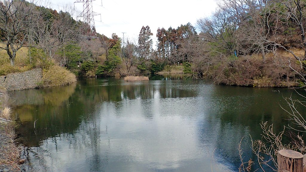 キャンピィだいとう(大東市立野外活動センター)近くの桜池