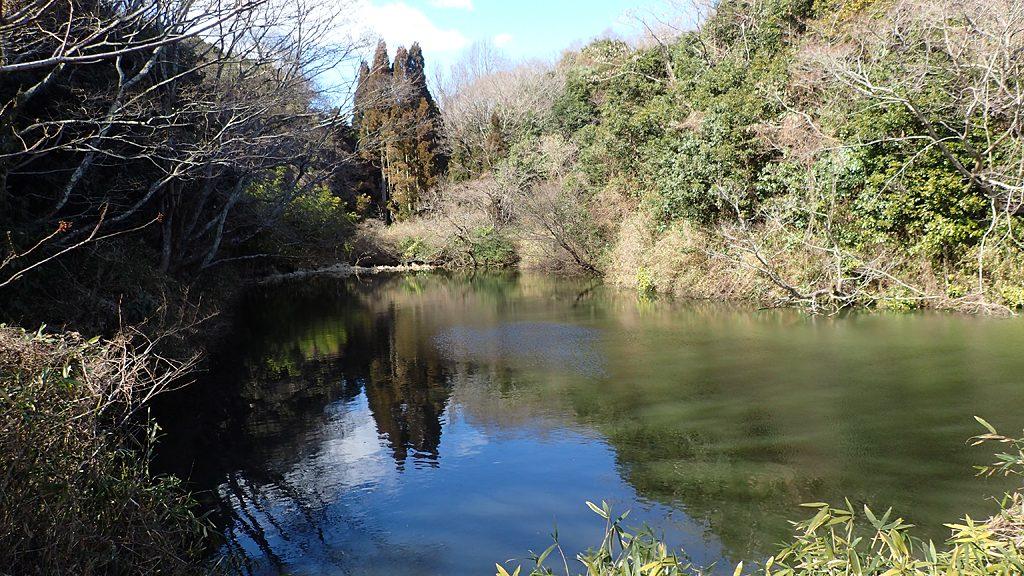 縦走歩道にはいくつかの池を見ることができました。