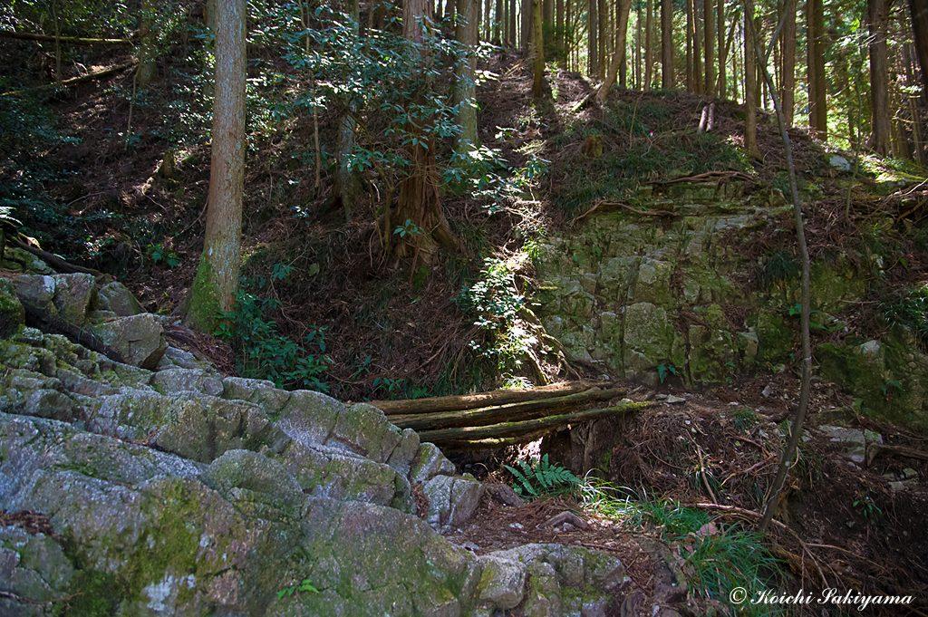 タカハタ谷(左)とツツジ尾谷の分岐(右)