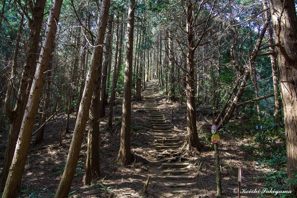 岩橋山への登り…また階段地獄の始まり