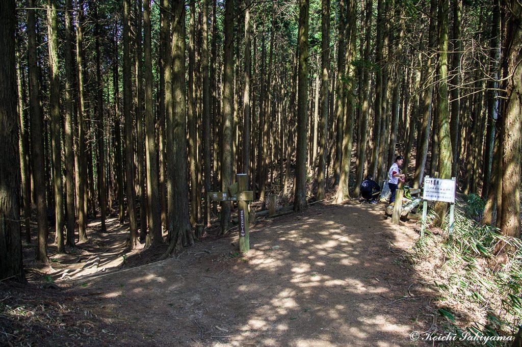 パノラマ台…写真の奥から関谷道へ