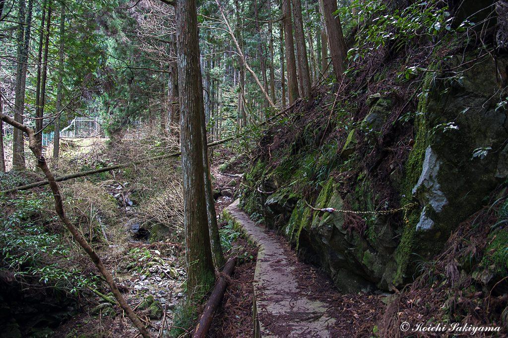 ツツジ尾谷、タカハタ谷、松の木道への入路