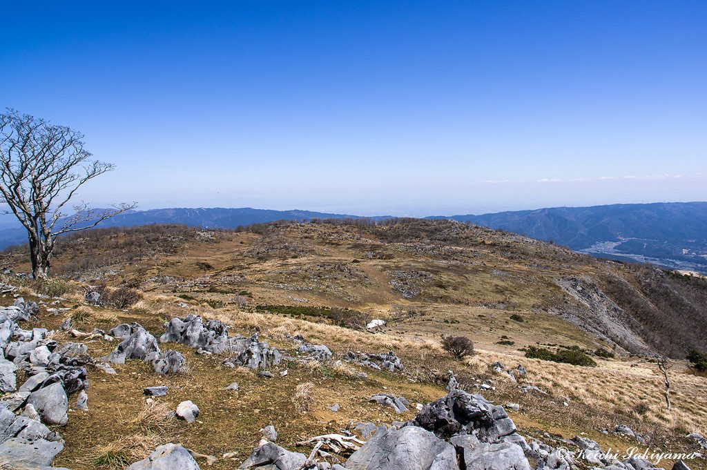 山頂台地のカレンフェルト風景