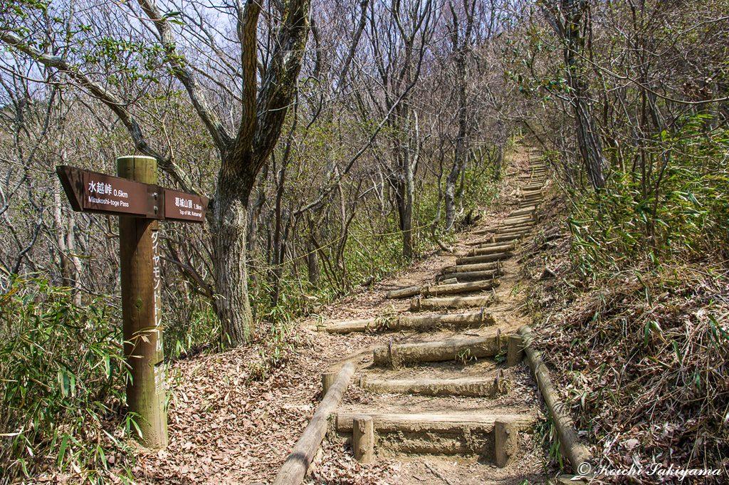 山頂までは距離は無いものの階段の急登が続く