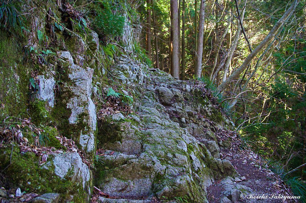 岩肌にも苔がついているので慎重に通過
