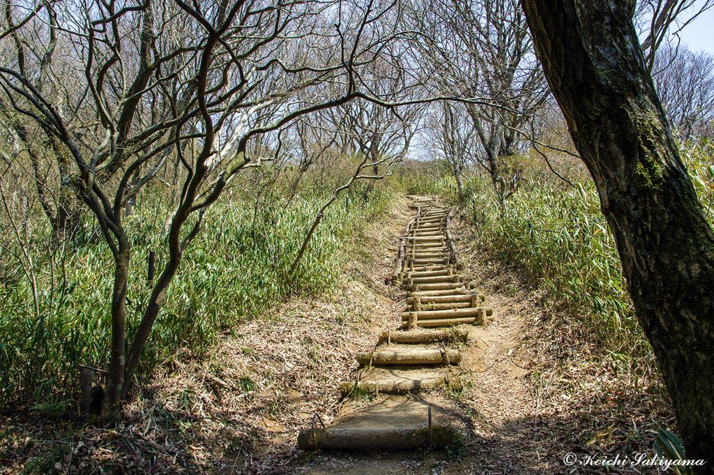 これでもかと続く階段、この登り返しは足に堪える