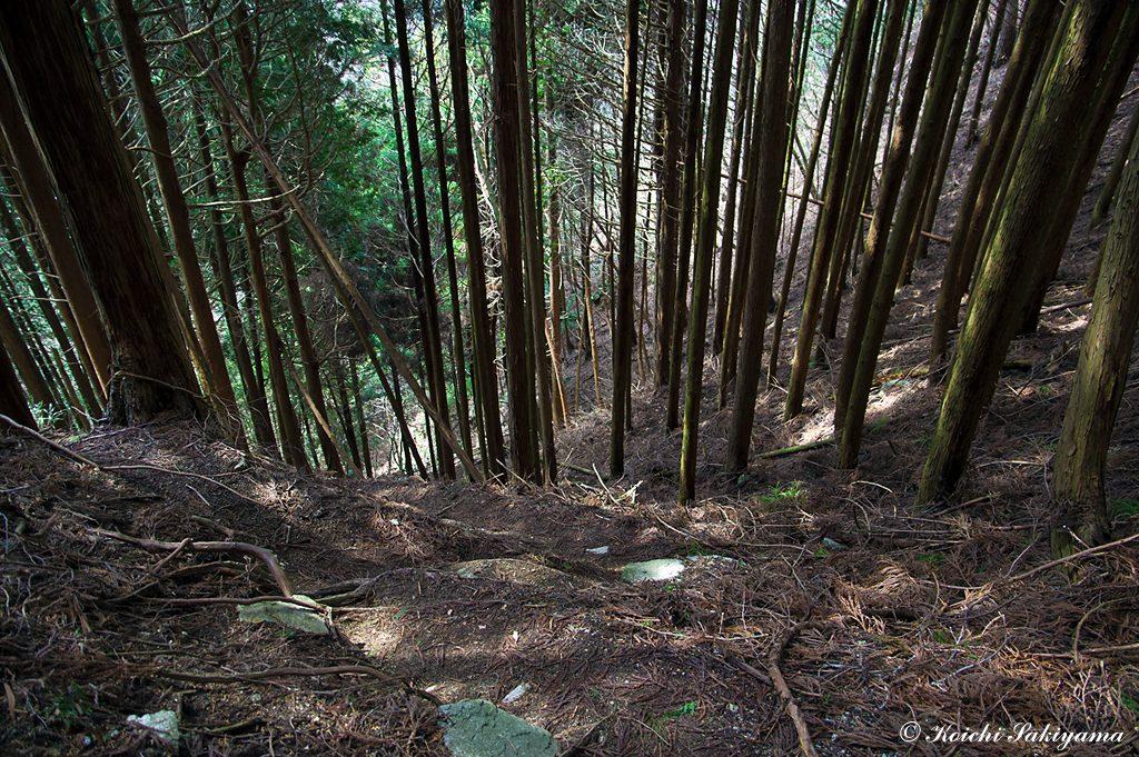 二の滝の巻き道は急峻な斜面のトラバース…滑りやすく注意が必要